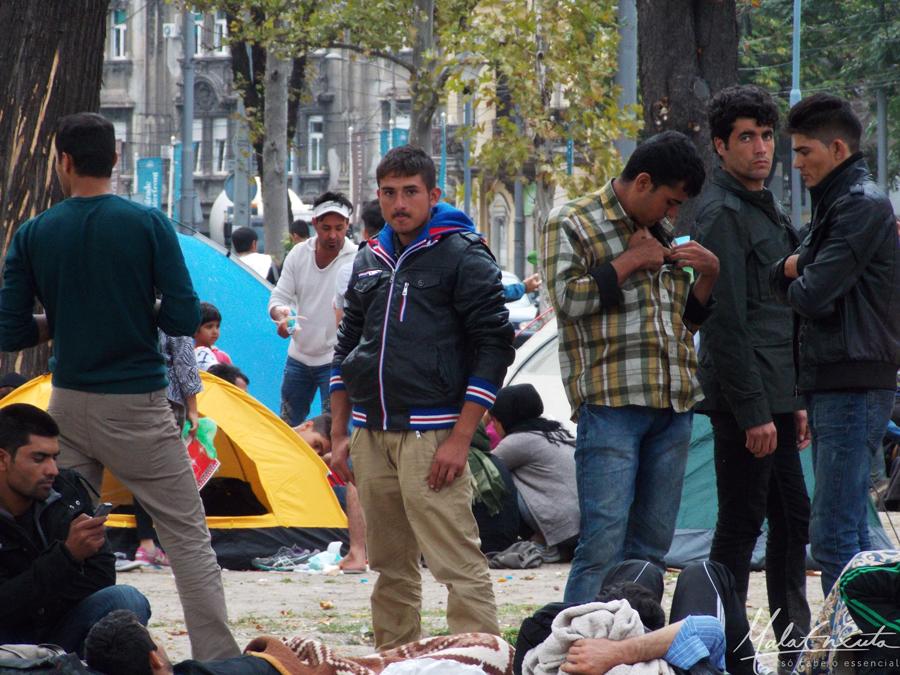 refugiados sírios Belgrado