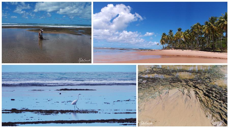 Taipu-de-fora-praia-peninsula-marau