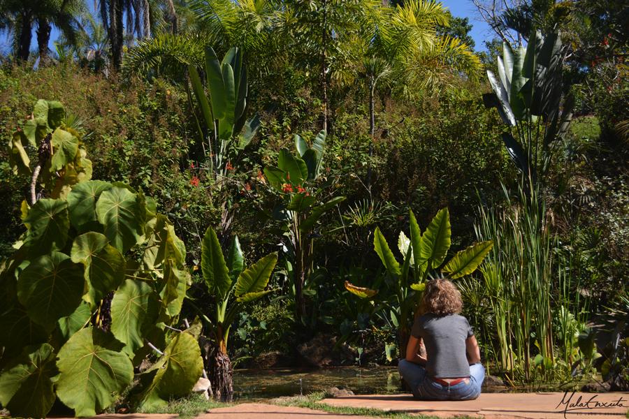 Jardim-Veredas