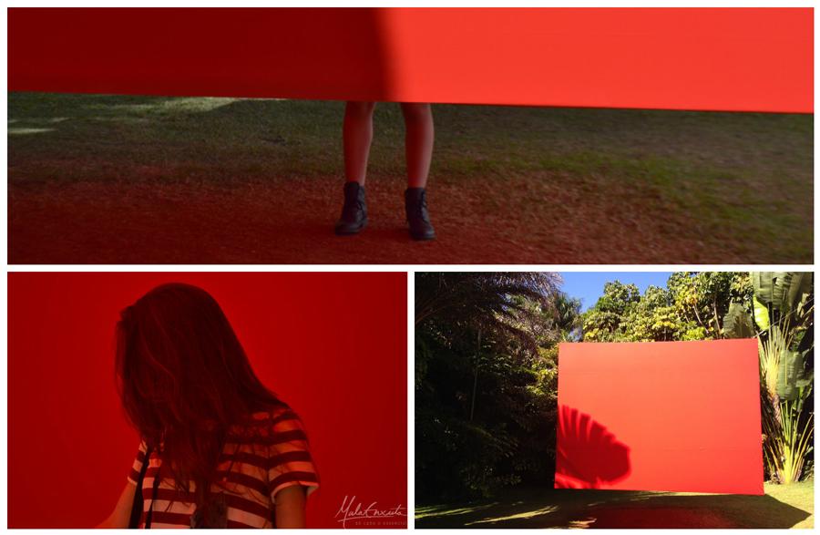 inhotim-red