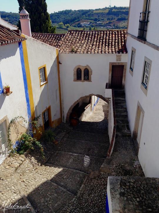 Casa -museu Maria José Salavisa e Abílio de Mattos e Silva