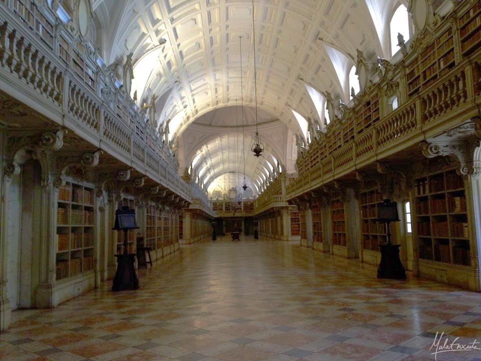 bibliotecamafra1